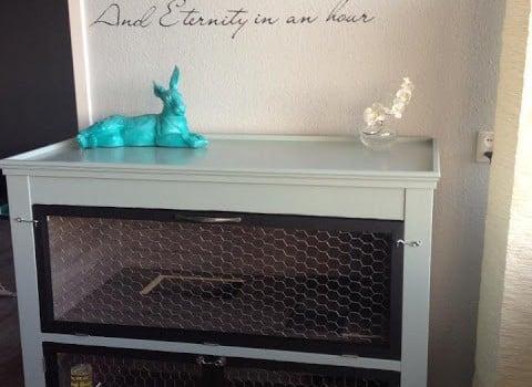 bunny+1-727691