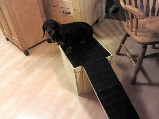 Dog Ramp For Bed An Ikea Diy For Our Little Dachshund