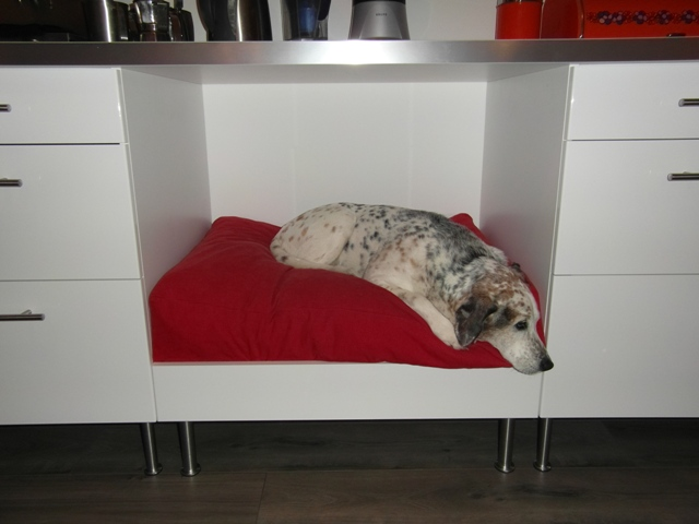 Faktum Kitchen Dog Bed Ikea Hackers Ikea Hackers