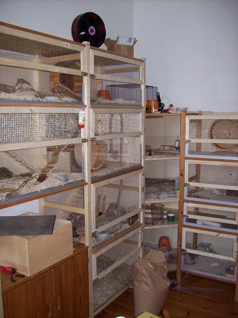 Ivar Jird S Cage Ikea Hackers
