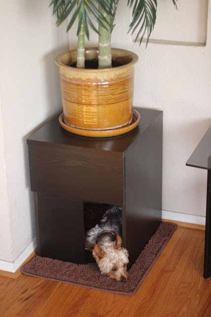 Indoor Custom Dog House