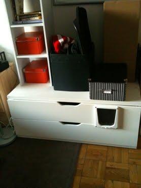 Delightful Bedroom Litter Box