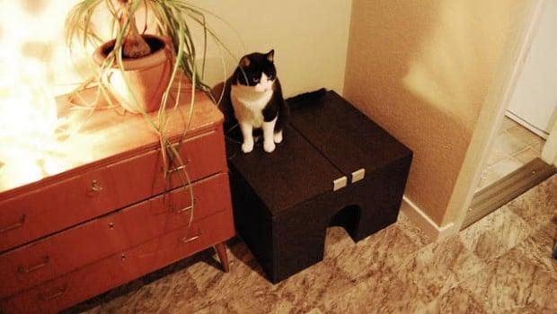 No Sawing Cat Litter Box Ikea Hackers Ikea Hackers