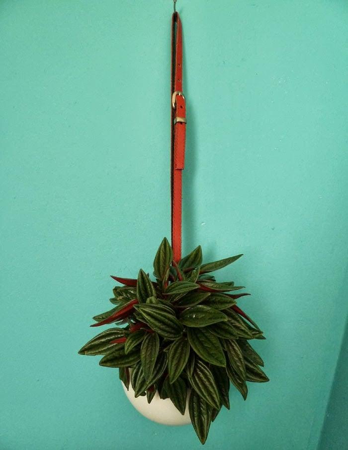 Ikea-planters-3-704875