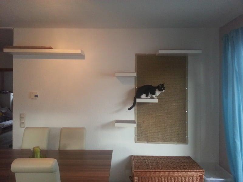 stairway to cat heaven ikea hackers ikea hackers. Black Bedroom Furniture Sets. Home Design Ideas