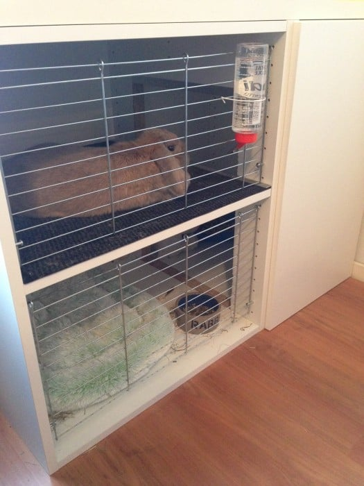 Bunny Cage With Faktum Cabinets Ikea Hackers