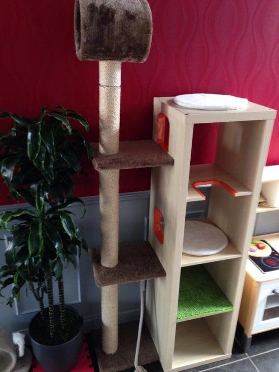 cat tree5