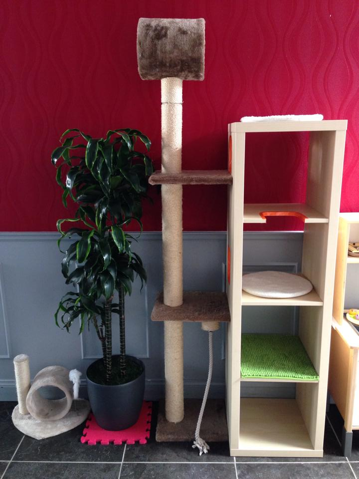 Cat playground and scratch post - IKEA Hackers - IKEA Hackers