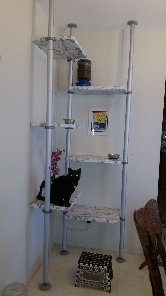 Elevated Cat House