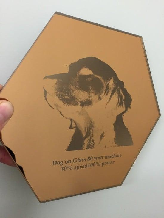 Ikea Pet Memorial Dog Mirror