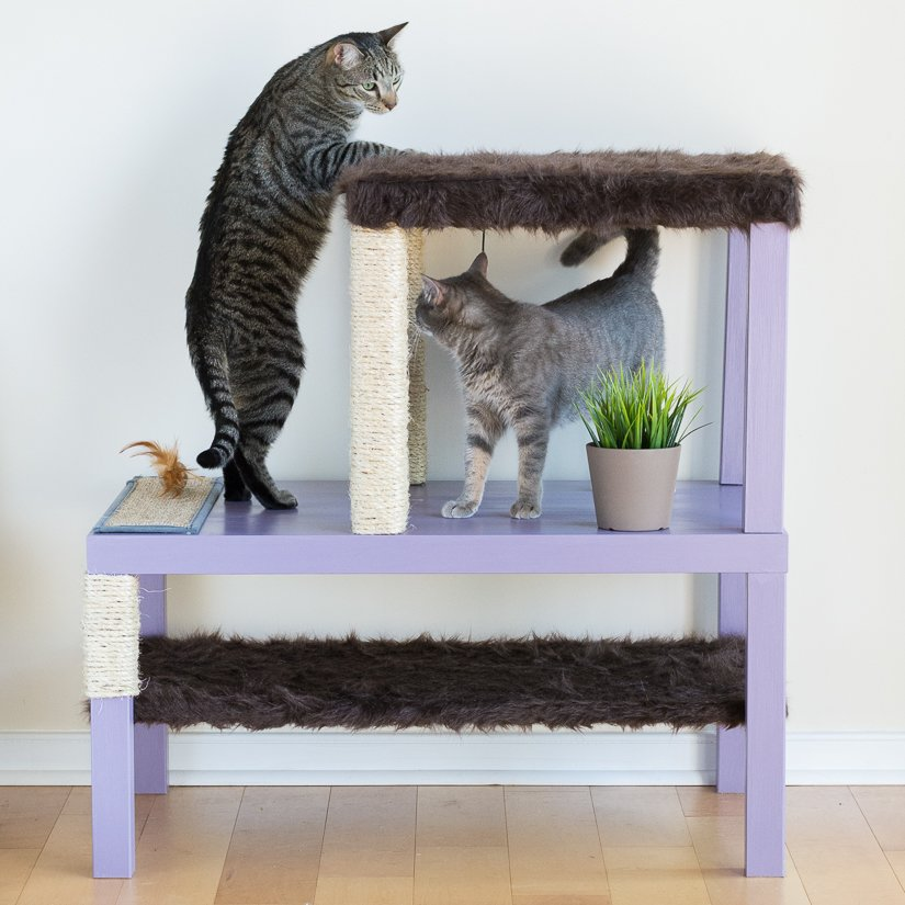 Make A Homemade Cat Condo Using Lack Tables Ikea Hackers Interiors Inside Ideas Interiors design about Everything [magnanprojects.com]