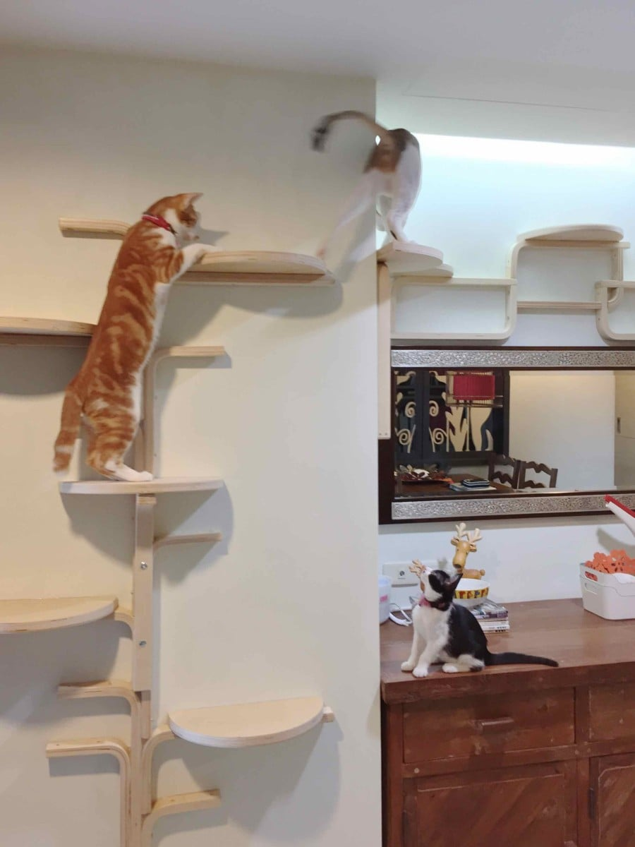 Cat tree by frosta x ikea hackers ikea hackers - Sofas para gatos ...