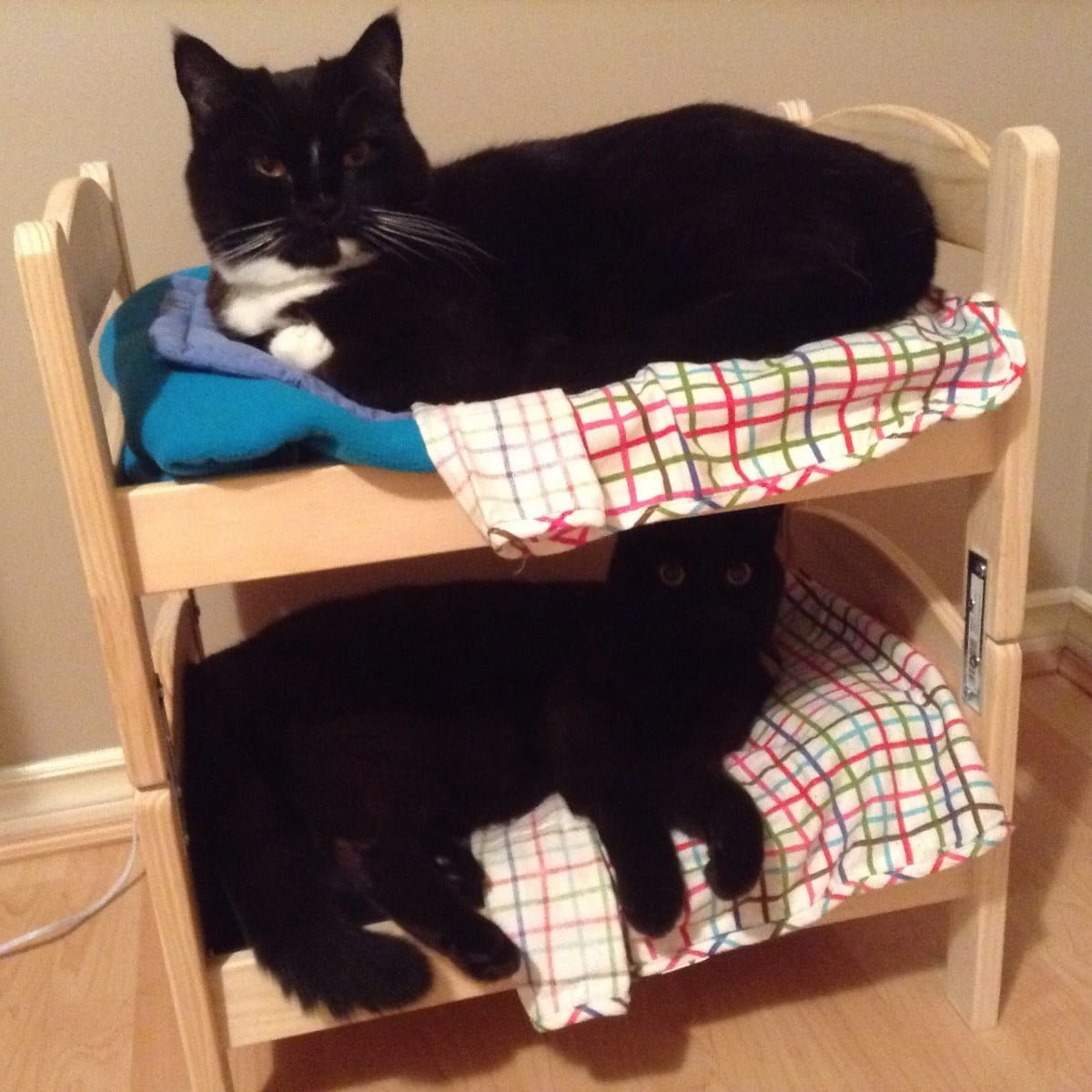 diy cat bunk bed using ikea DUKTIG doll bed
