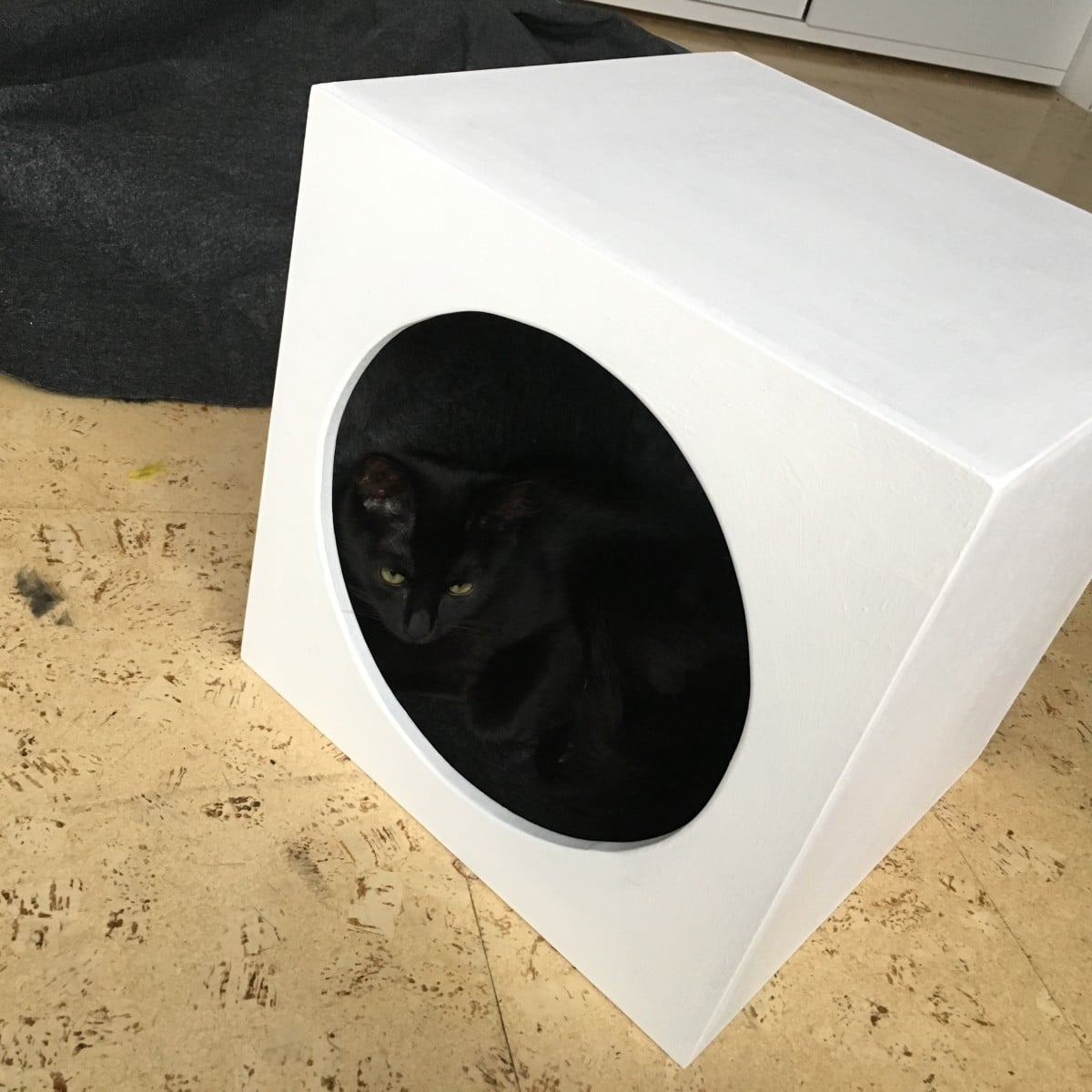 Cat Cave Insert For Expedit Kallax Ikea Hackers Bloglovin  # Notice Expedit Ikea
