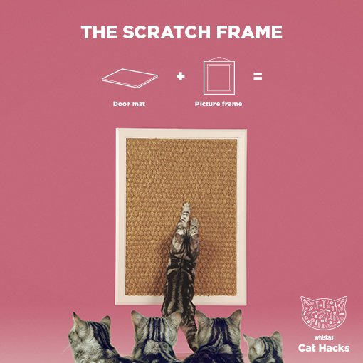 The Scratch Frame IKEA Cat hack