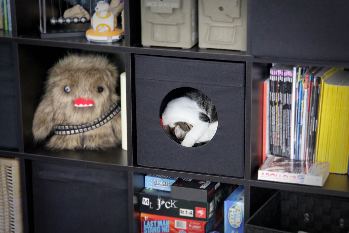 Bedroom furniture storage - The Kallax Cat Cave Ikea Hackers Ikea Hackers