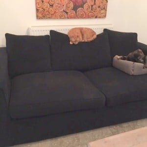 old-ikea-sofa