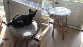 skogsta-stool-cat-scratcher-and-perch