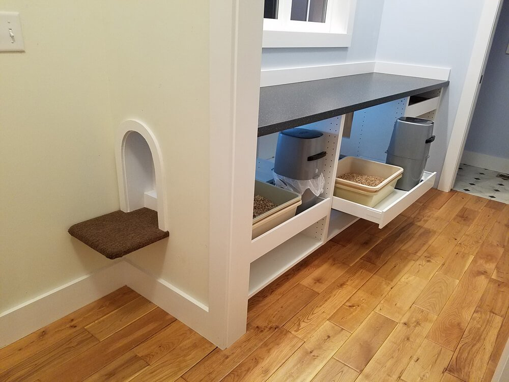 Cat Scratching Litter Box Wall