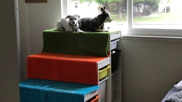 Diy Dog Window Perch With Steps Ikea Hackers Ikea Hackers