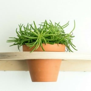 plant-shelves-ikea-hack-tutorial