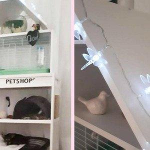 multi-level-pet-cage-featured