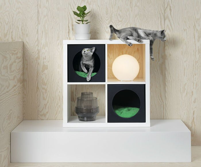 Cat house with pad