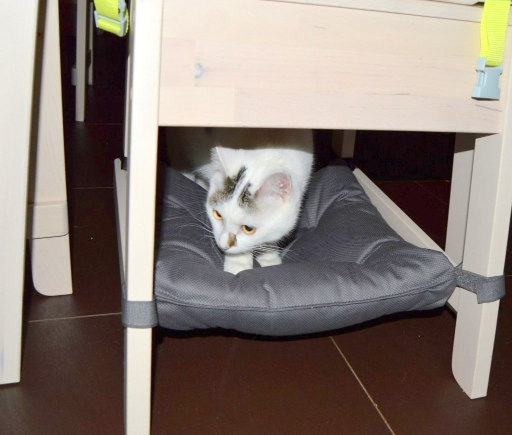 IKEA hack for pets - cat hammock