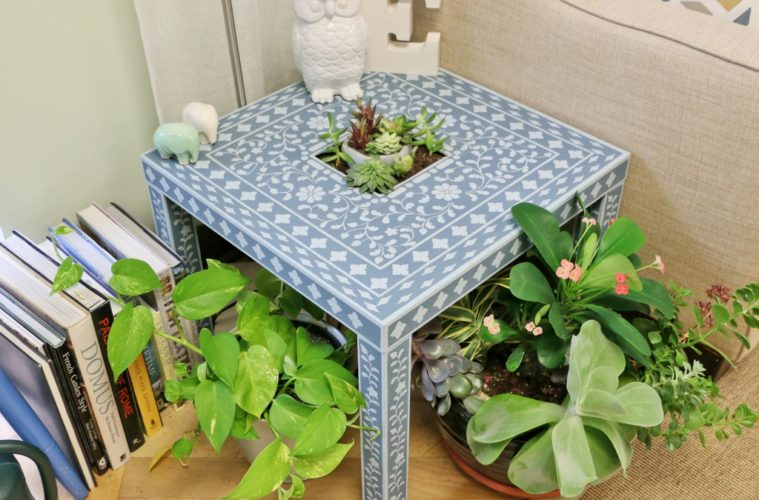 IKEA LACK Accent Table for succulents