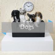 IKEA Hackers Pet Furniture Dogs Category