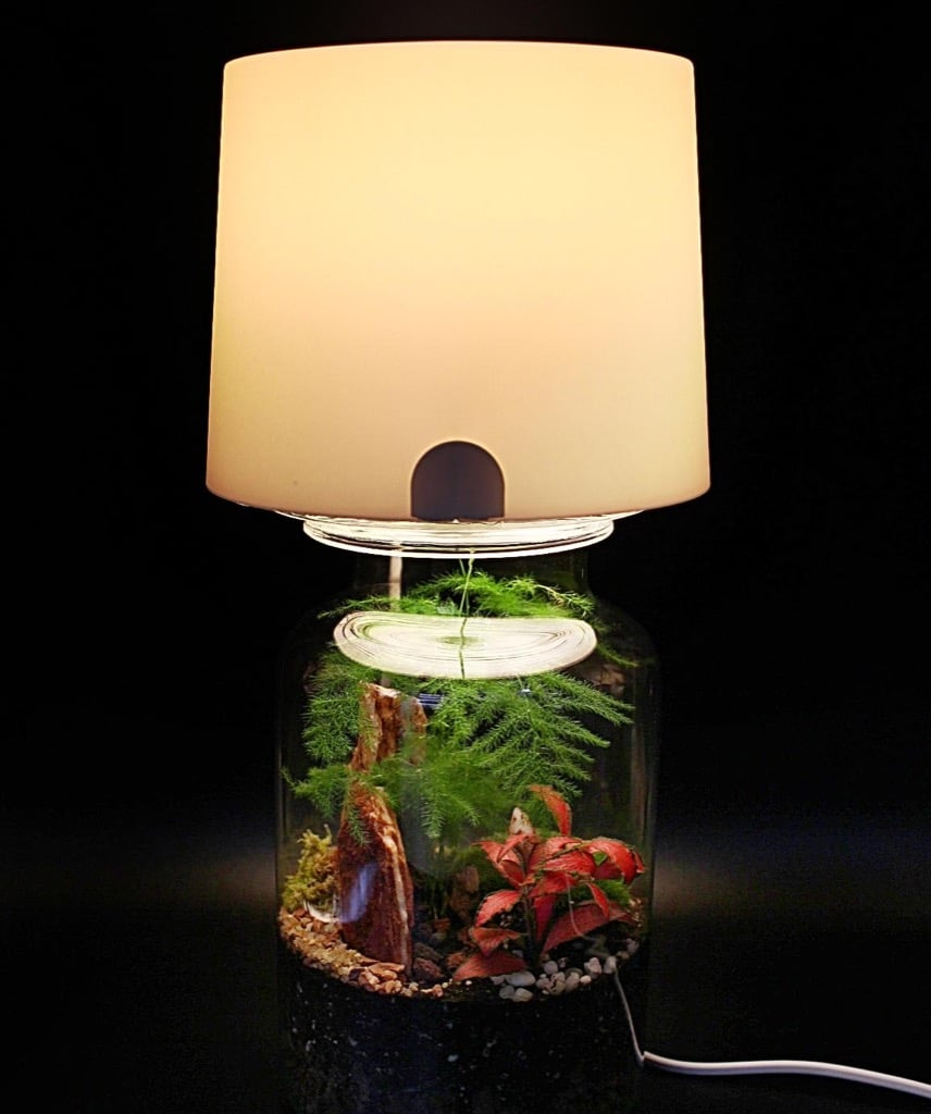 Terrarium Lamp An Easy Hack For Your Miniature Garden Ikea Hackers