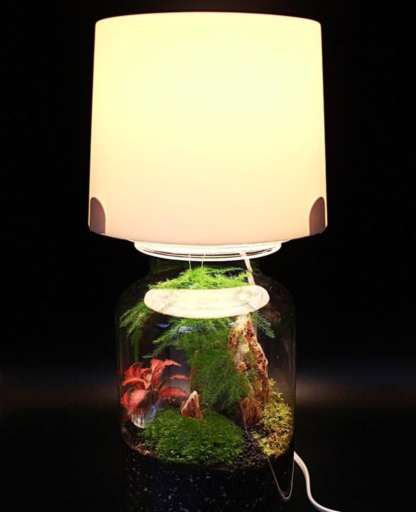 terrarium lamp-2
