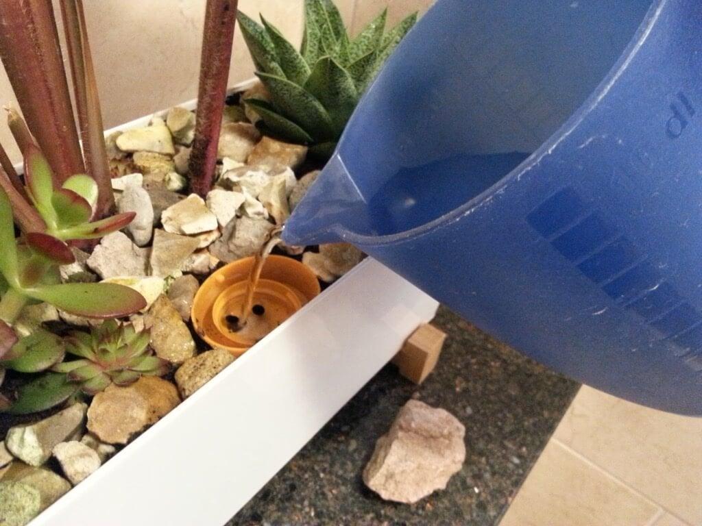 DIY self-watering planter - watering