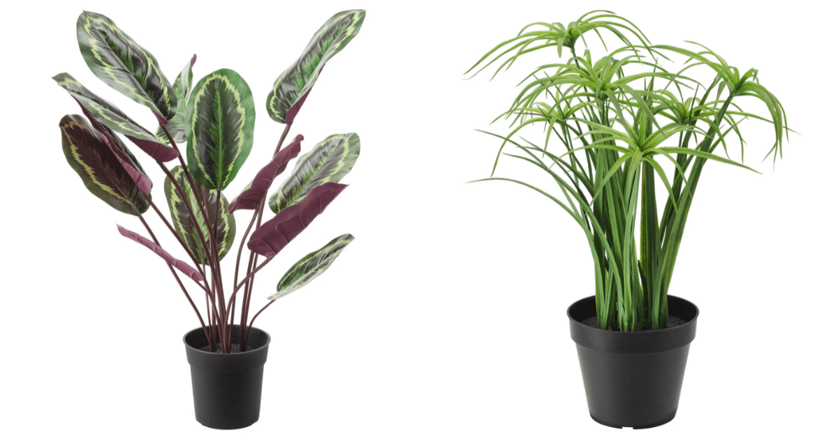 Calathea and Papyrus IKEA artificial plant