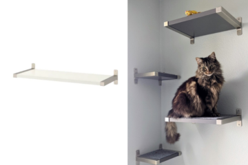 floating cat shelves