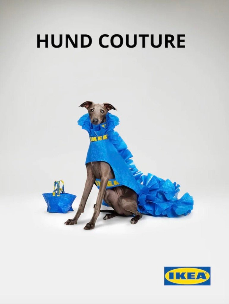 hund couture