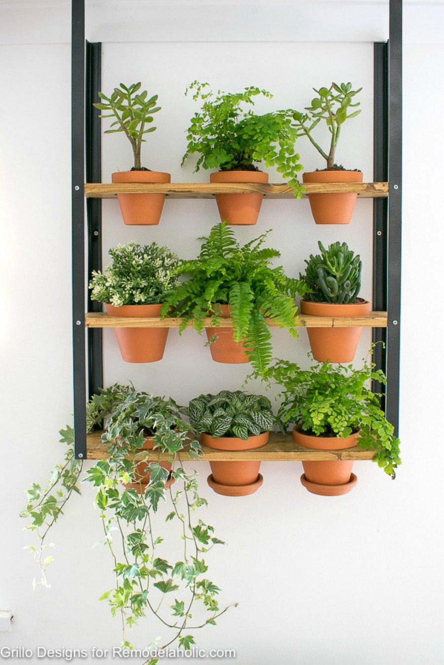 hanging wall planter