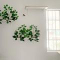 cat canopy wall shelves hack