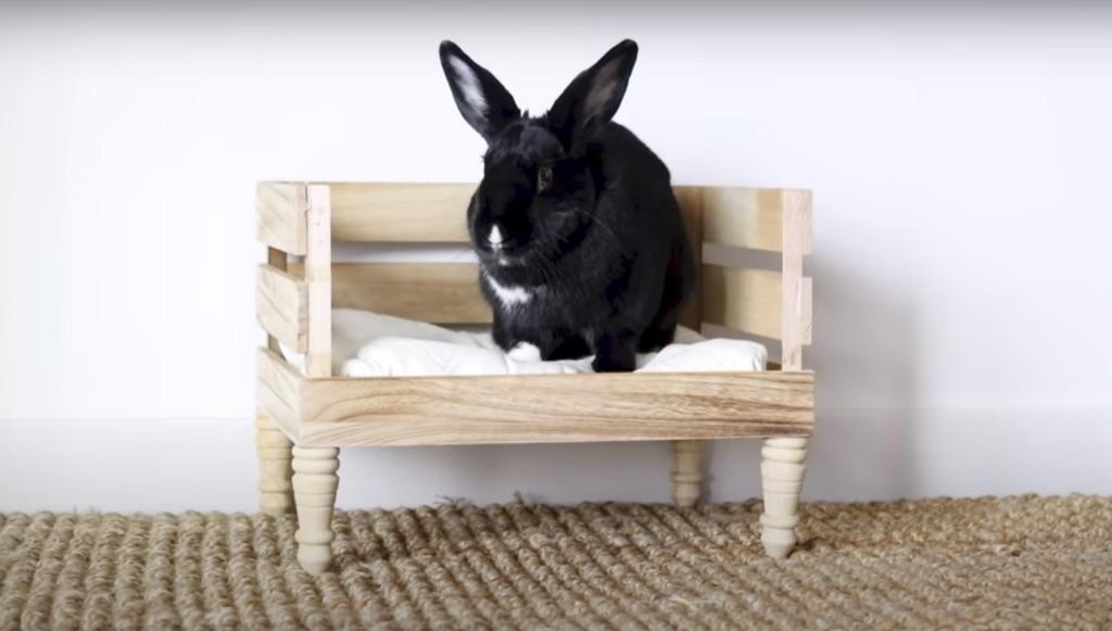 bunny bed
