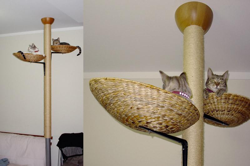 Diy cat tree plans your secret weapon Plans PDF Download Free diy ...