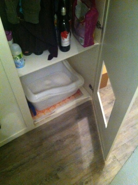 Closet litter box hack