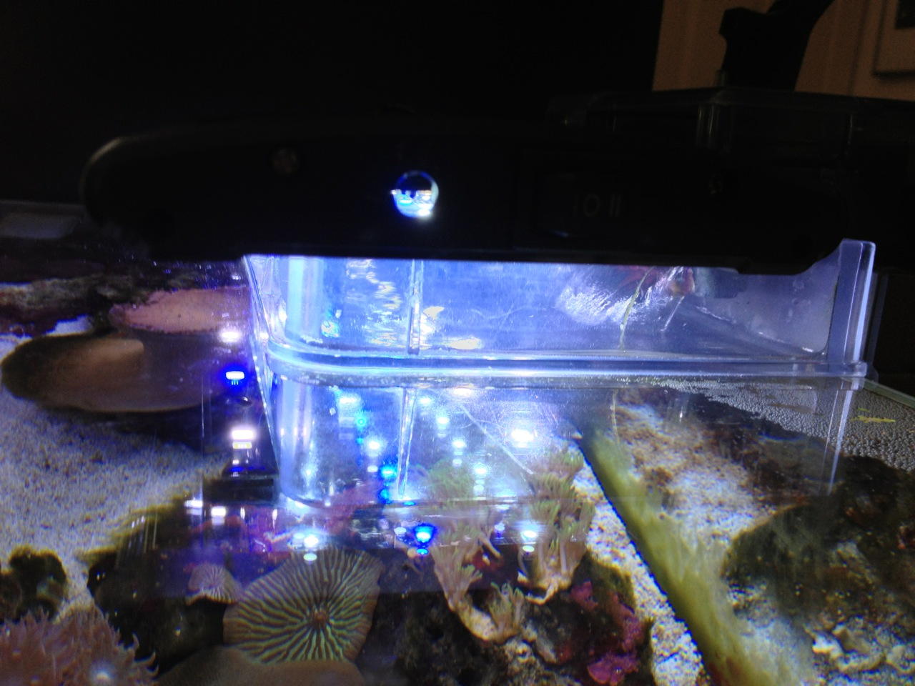 Ikea Grundtal Countertop Lighting ~ Satta Sitter for Aquarium Light  IKEA Hackers  IKEA Hackers