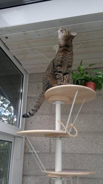 SNUDDA cat tree