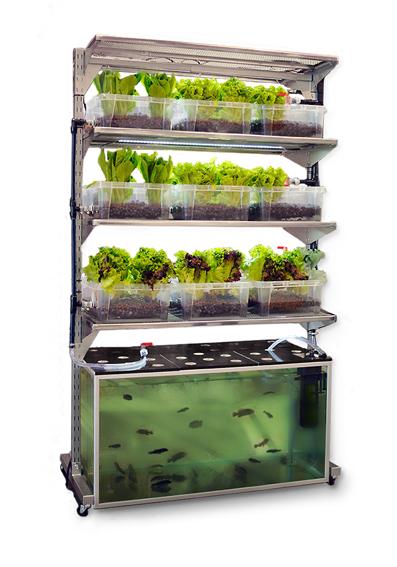 IKEA hydroponic farm