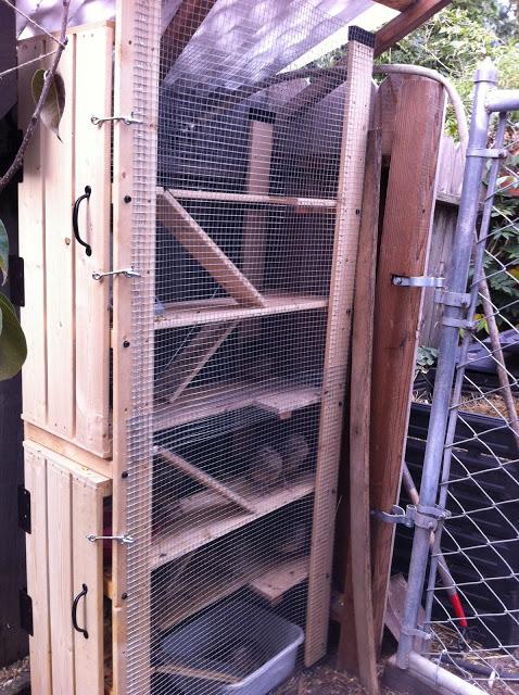 housing for quails