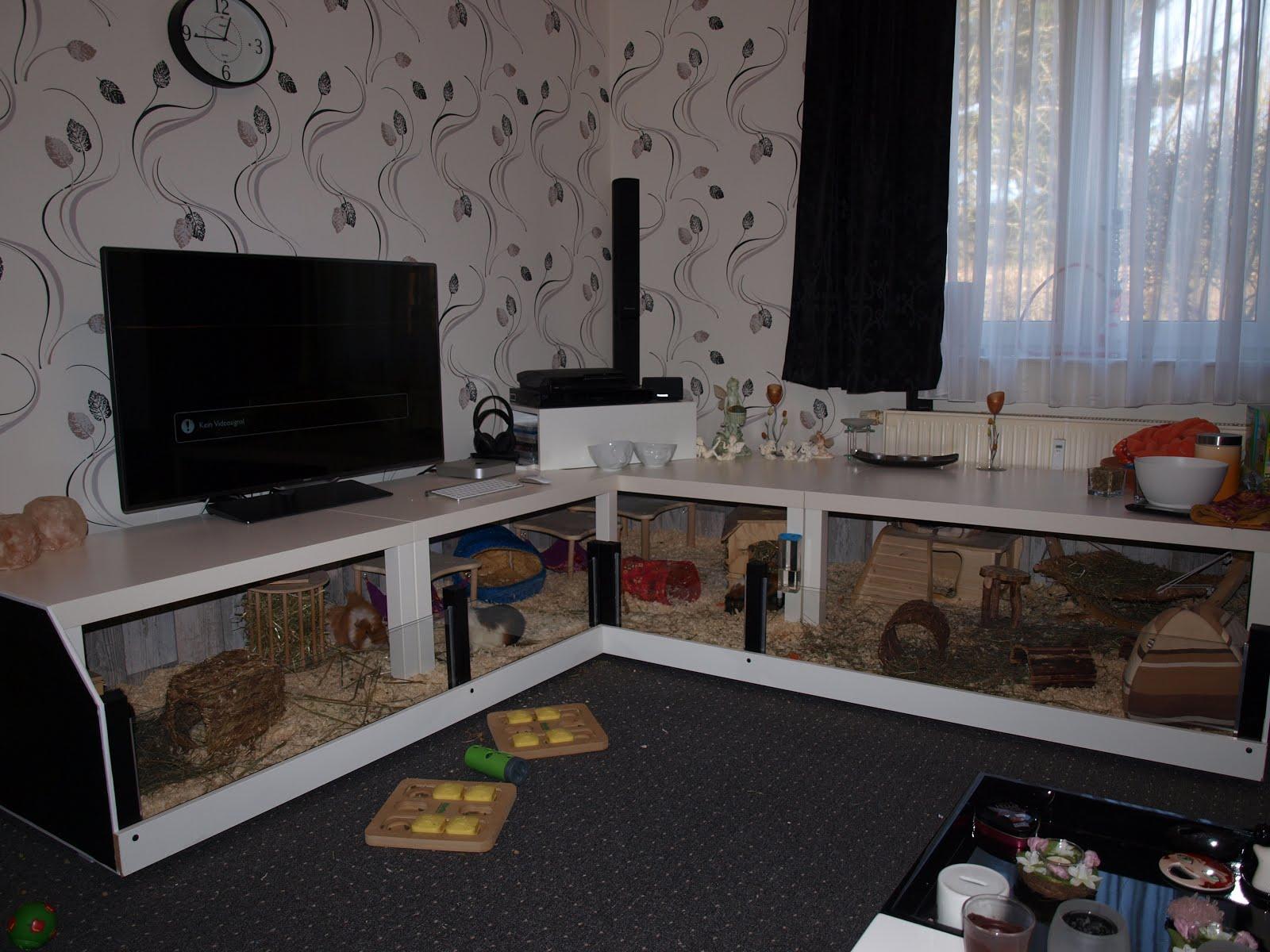 Modern Guinea Pig Cage IKEA Hackers