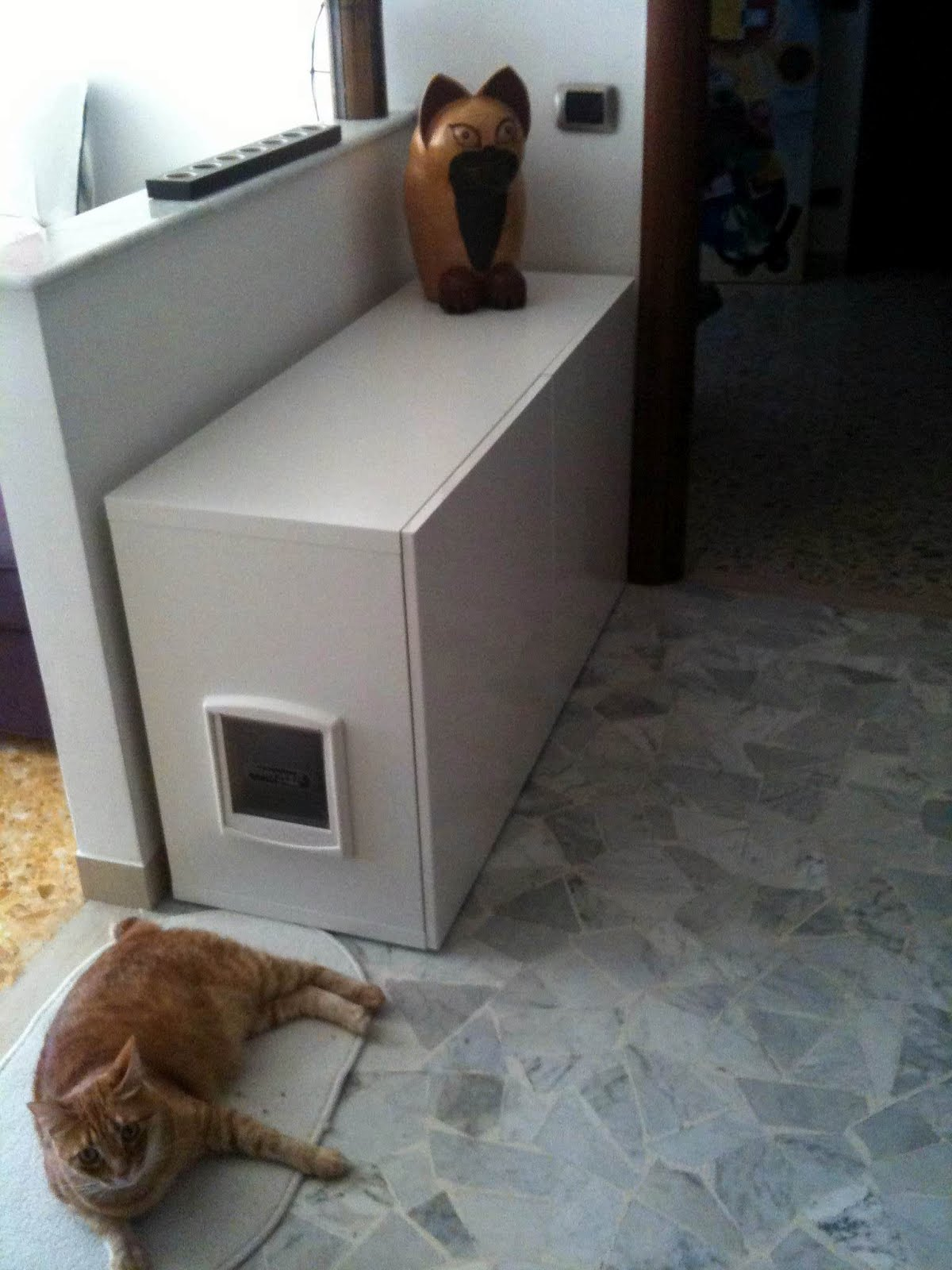 Hidden Cat Litter Box
