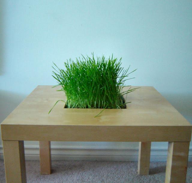 LACK Side Table Planter