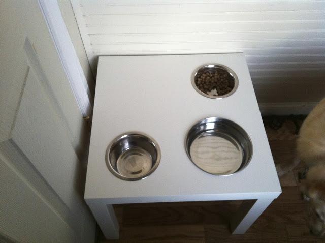 Dog Diner