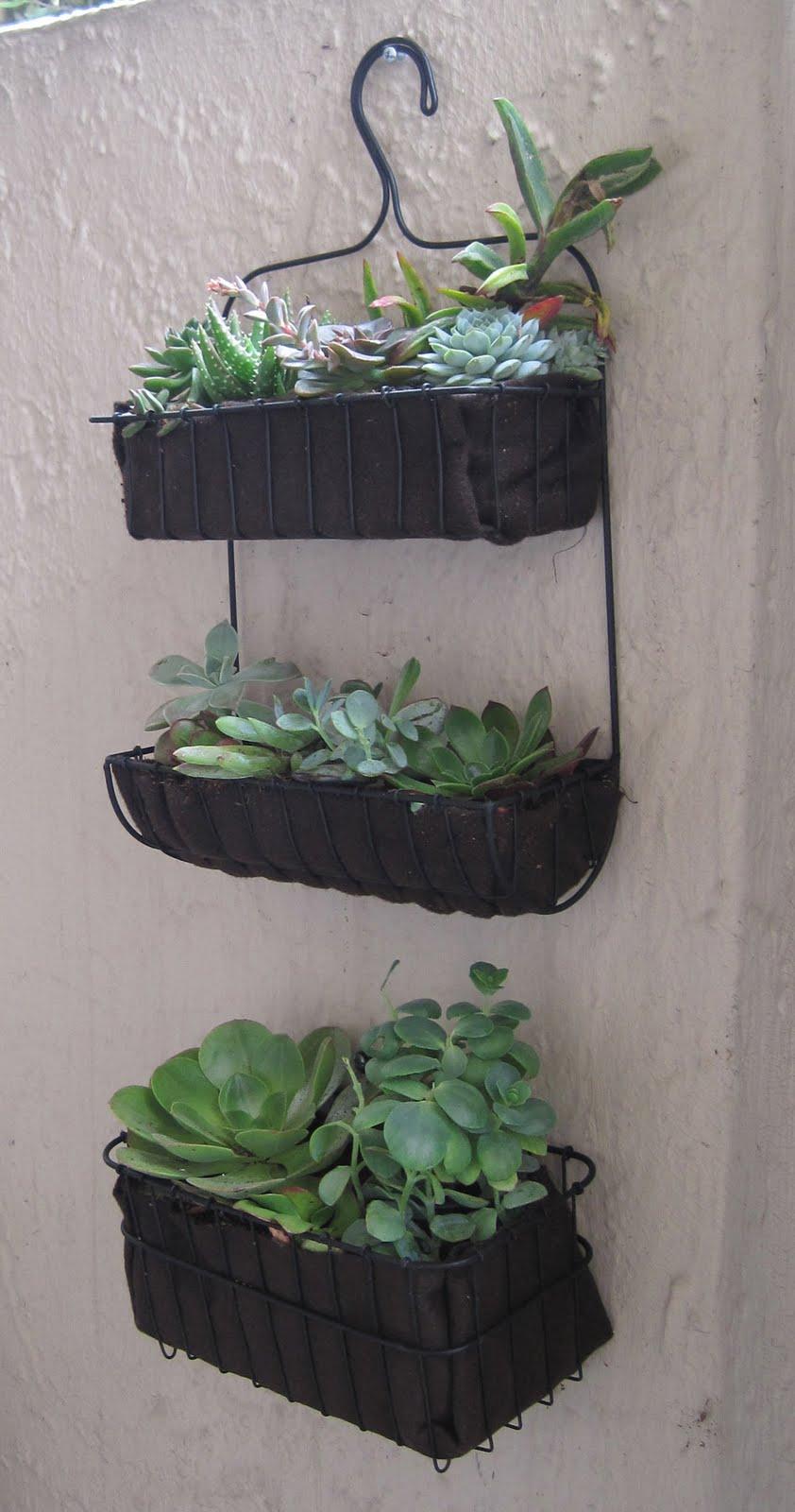 Wall Planters Ikea Bath Organizer To Succulent Garden Ikea Hackers Ikea Hackers